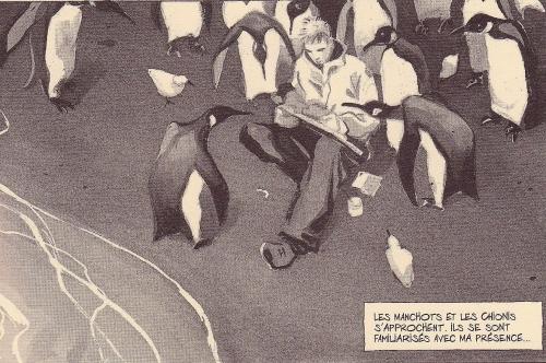 lepage pingouins