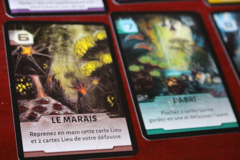 Le marais n'est pas qu'un quartier de Paris, c'est aussi un lieu d'Artémia.