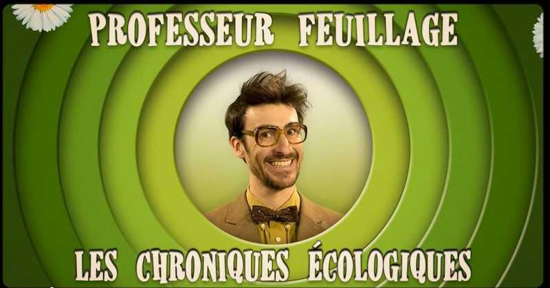 L'interview Vidéaste : rencontre avec Professeur Feuillage !